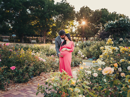 Everything's Coming up Roses | Walnut Creek Maternity Photographer