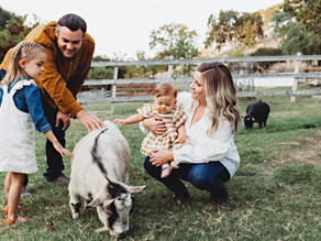 A Day at the Ranch   Walnut Creek Family Photographer