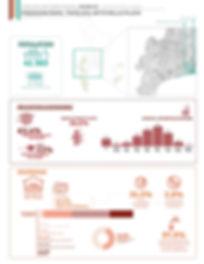 Census Infographic