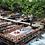 Thumbnail: Пикник и рыбалка в «Ulupınar - Premium Park»