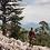 Thumbnail: Джип сафари на высоту 1300м