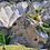 Thumbnail: Каппадокия с перелётом на 2 день