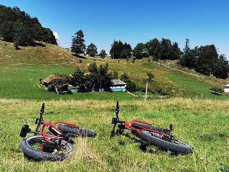 Tur e-bike Sirnea dificultate medie