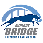 MurrayBridge_Logo_200px.png