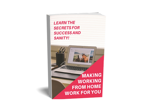 Making Working From Home Work For You (ebook)