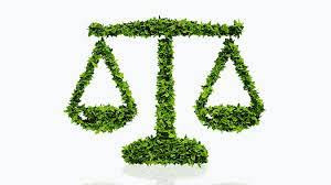 JUDICIAL ACTIVISM IN ENVIRONMENT PROTECTION IN INDIA