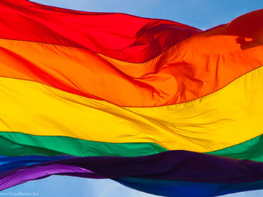 UNFOLDING THE POSITION                   OF LGBT+ IN INDIA : A DISCUSSION