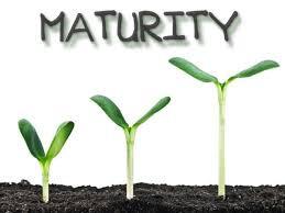 AGE OF MATURITY- AN ARBITRARY ASSUMPTION