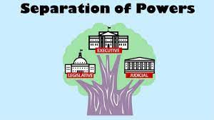 SEPARATION OF THE TWO WINGS OF POLICE: LAW AND ORDER AND INVESTIGATION
