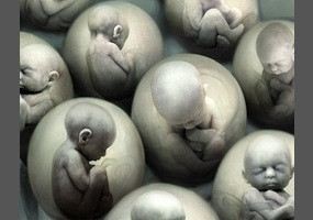HUMAN CLONING IN INDIA: WHAT ARE THE LEGAL IMPLICATIONS?