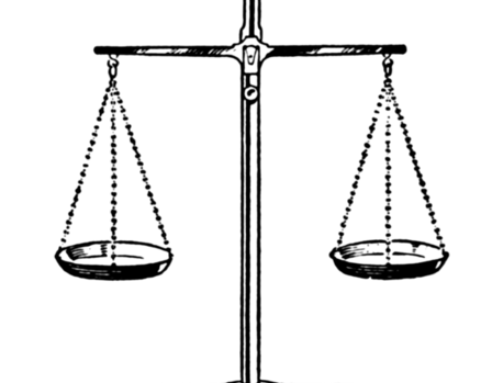 JUDICIAL REVIEW OF THE DISCRETIONARY POWERS EXERCISED BY THE EXECUTIVE