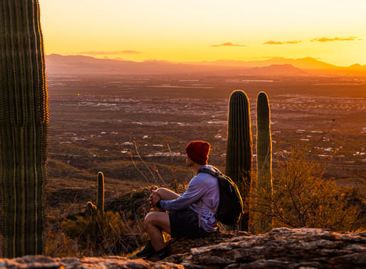 15 Best Hiking Trails in Tucson, Arizona