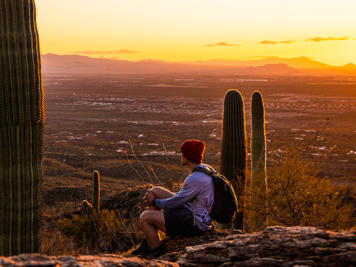 15 Best Hiking Trails in Tucson, Arizona