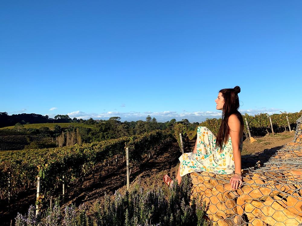 Constantia Glen boutique wine estate at sunset