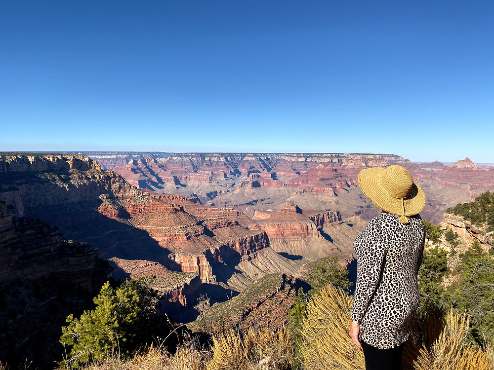 View of the Grand Canyon at the south rim