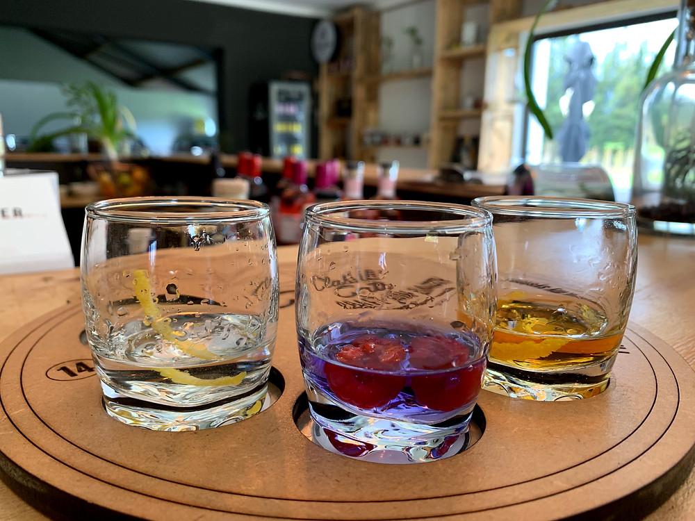 Gin tasting at Classic Cats Craft Gin Bar at Vredenheim