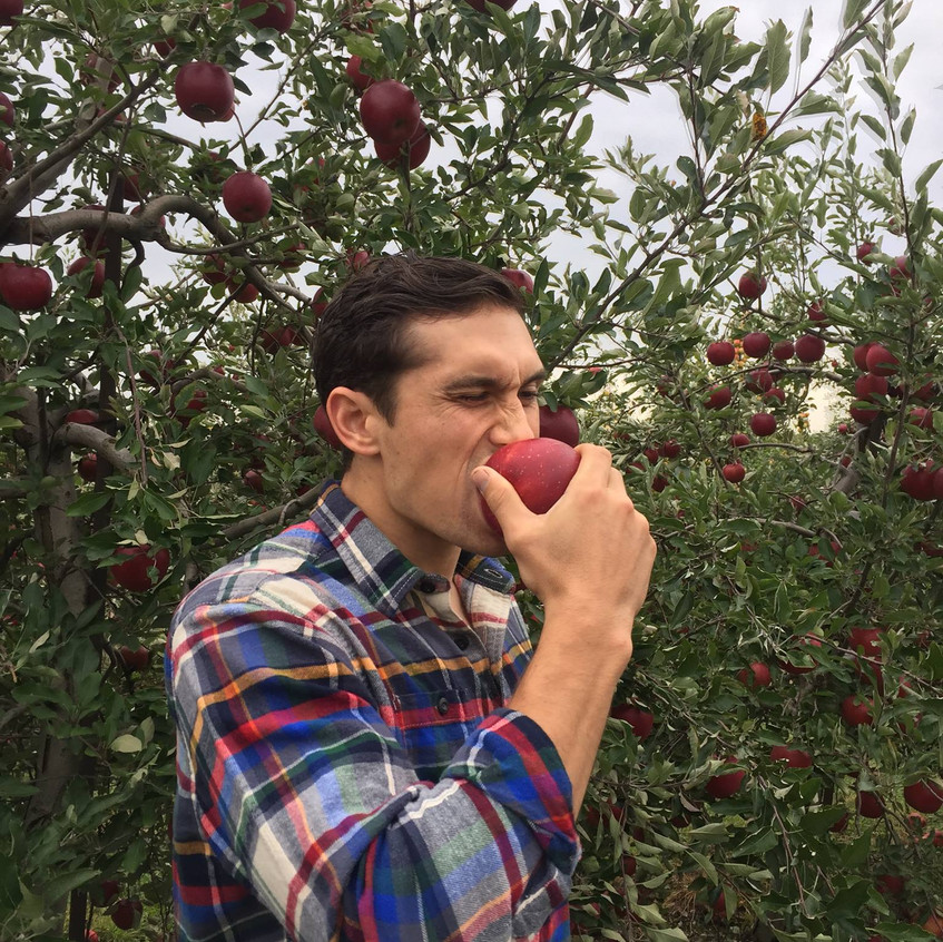 Hand-picked apple for Fall