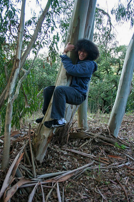 035 Climbing Tree.jpg
