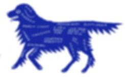 blu dog.JPG