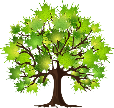 How-to-prune-a-maple-tree-768x728.png