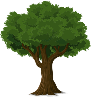 tree-576847__480.png