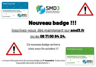 Badge smd3.JPG