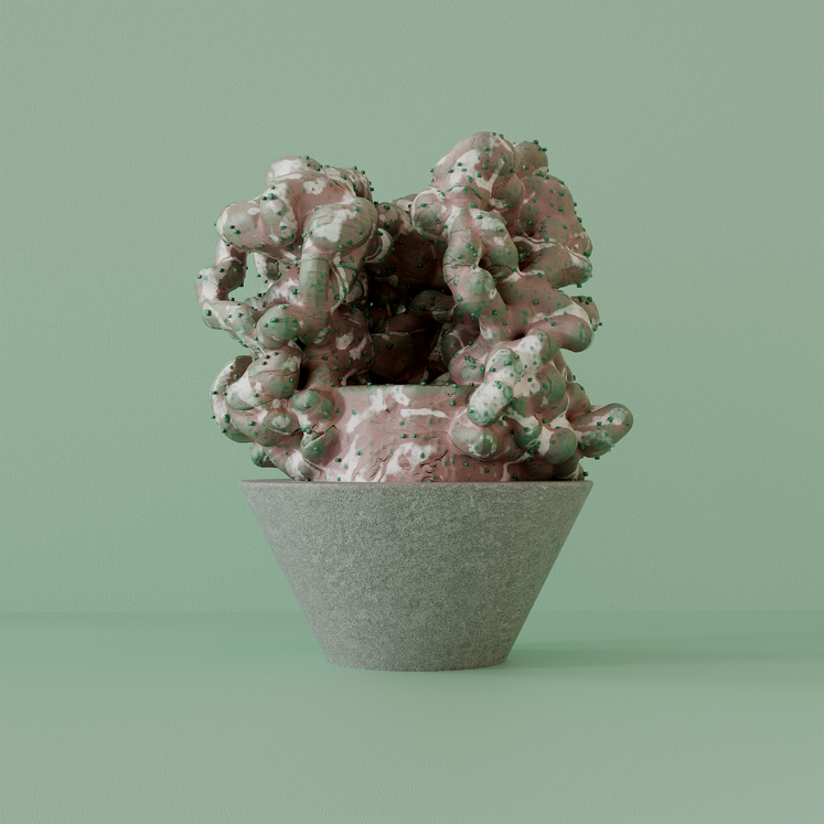 02_Coral_v01_low.png