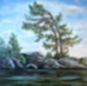 Candadian Will, 48 x 480.JPG