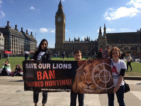 Global March for Lions 2016