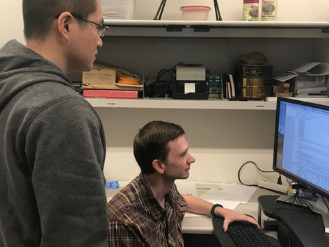 Jacob Washburn and Hai Wang test machine learning methods to predict mRNA expression levels