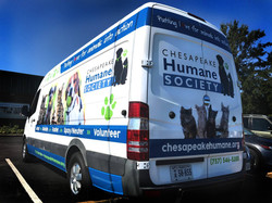 ChespeakeHumaneSociety