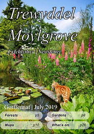 newsletter-cover-2019-05.png