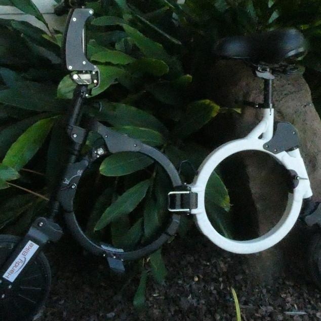 Black and White Electric Bike