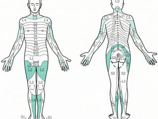 C6,7が引き金の胸腰椎部の疼痛