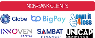 Non Bank Clients.png
