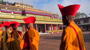 India monks ceremony.JPG