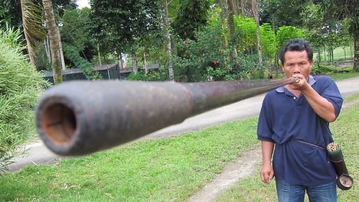 Malaysia19 Blower.JPG
