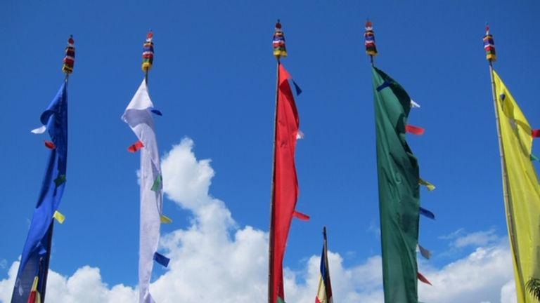 India flags2.JPG