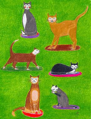 Madaboutcats.jpg