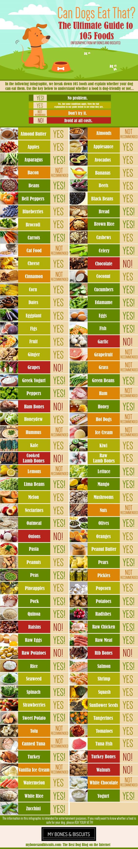 Foods safe to eat.jpg