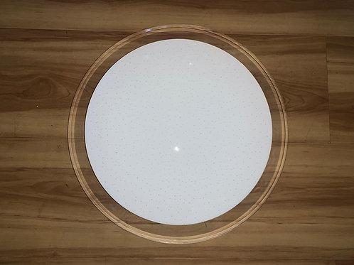 Ceiling Light 8827
