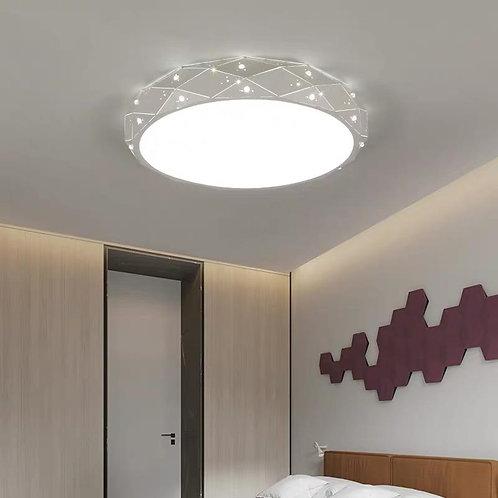 Ceiling Light 8841