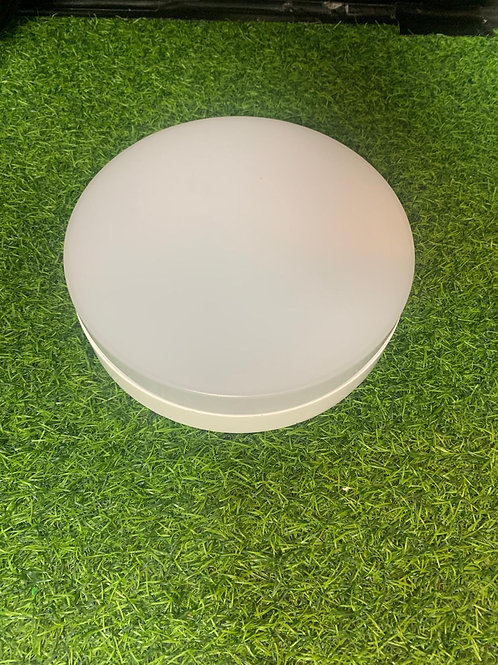 Ceiling Light 8823