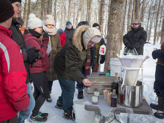 2020 PEI Winter Woodlot Tour