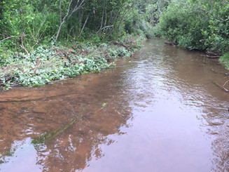 Stream Enhancement and Fish Passage Monitoring in Three PEI Watersheds