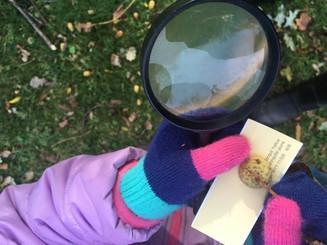 Wild Child PEI Nature Immersion Program