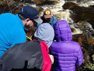 Pisquid River Enhancement Project