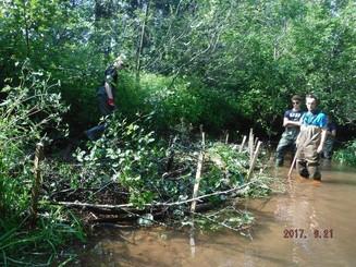 Bedeque Bay Environmental Management Association