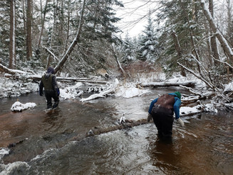 Increasing Anadromous Fish Passage Within the Bedeque Bay Watershed