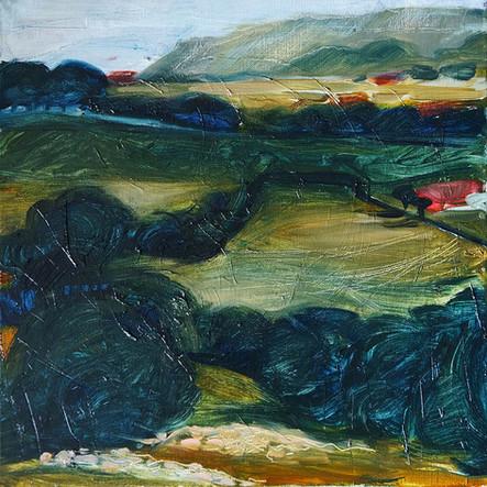 Cantabrian Fields